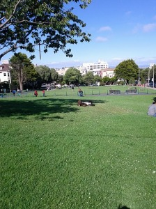 Duboce Park in SF