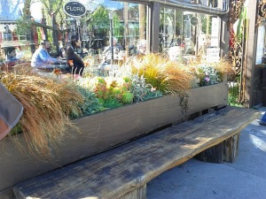 Cafe Flore participates with a vigor in beautifying the neighborhood!