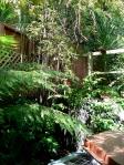 Bamboo corner