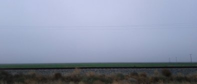 Flat farmland in the fog.
