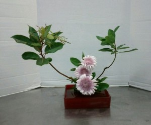 Slanting Moribana Variation #3. Chrysanthemums (?) flanked by strawberry tree (Arbutus 'Marina') branches.