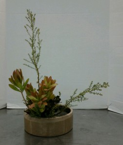 Upright Moribana Variation #2.