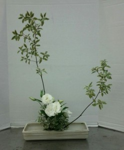 Upright Moribana Variation #3. I used a variegated pittosporum with white lisianthus.