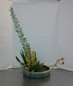 My Upright Moribana Variation #4 used leaves and flowers from a yellow kangaroo paw with the branch of an acacia.