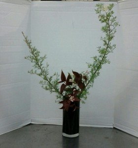 Upright Nageire Variation #3, Gyakugatte (mirror image positioning as compared to standard.) The branches are white-flowering grevillea, and persicaria is the dark foliage.