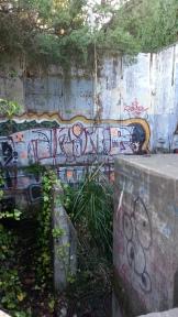 Love this graffiti!