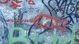 Narwhal graffito.