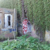 "The red graffito marks the entrance into the ""berm""."
