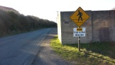 Shouldn't there be a frog on that sign? :)