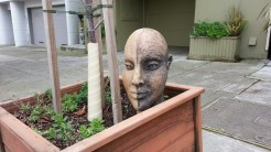 I like the sculpture, but it looks really funny in this planter box in Cole Valley.