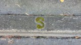 Moss-filled letter on the street...