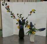 """Ikebana lesson """"Variation #8, Nageire and Nageire,) with echium and flannel bush."""