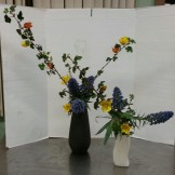"Ikebana lesson ""Variation #8, Nageire and Nageire,) with echium and flannel bush."