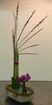 "My ""Straight Lines Freestyle"" arrangement from Ikebana class. The stems are the spent flowers and growing seed pods from montbretia (Crocosmia) and the flowers are from a succulent Calendrinia spectabilis."