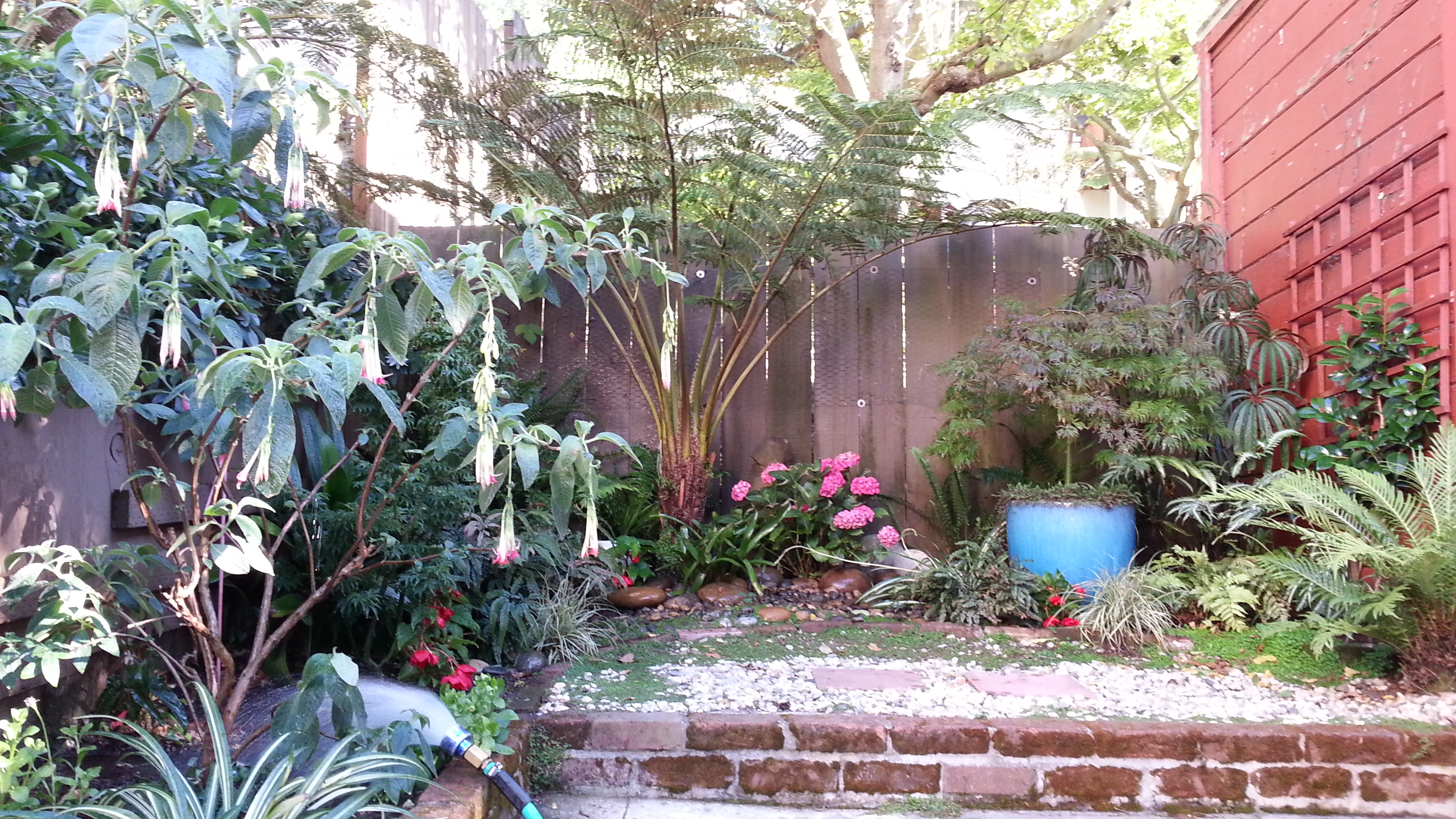 putzing around the grotto bozannical gardens