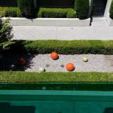 The spheres from above, mimic the topiary forms along the walls and highlight the orange hints in the maple.