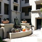 The modern grouping of pots and succulents at the head of the courtyard, as seen from the elevator.