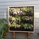 The planted vertical garden is a living picture!