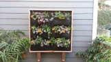 The vertical garden adds a punch of color and brightness even without the sun right on it.
