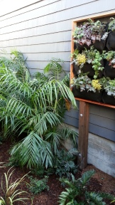 The bamboo palms transition to a vertical garden.